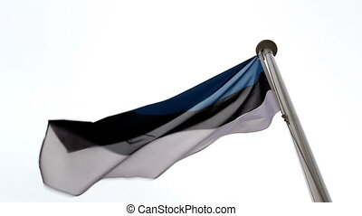 Estonia flag waving in the air with blue black and white...