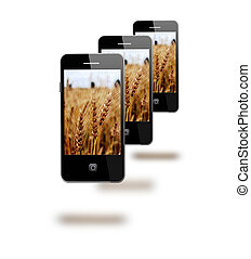 mobile phones with images os fields of wheat - modern mobile...