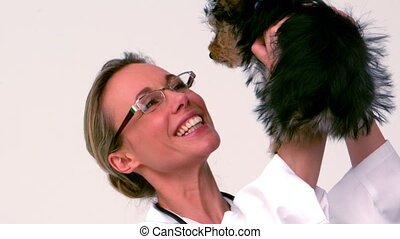 Vet holding up yorkshire terrier puppy and smiling in slow...