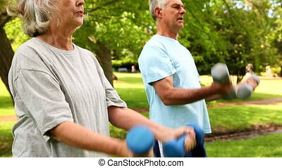 Retired couple lifting weights outdoors