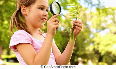 Little girl looking at plant through magnifying glass on a...