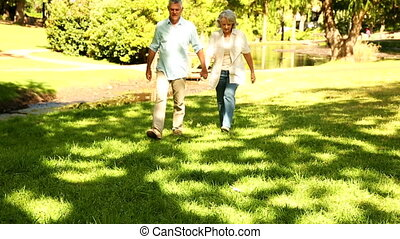 Retired couple walking in the park on a sunny day