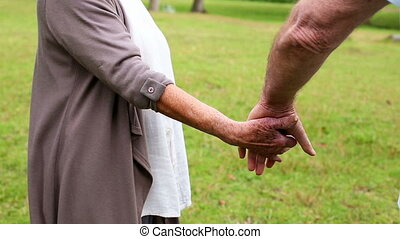 Retired couple standing in the park together on a sunny day