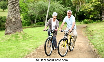 Retired couple in the park riding bikes