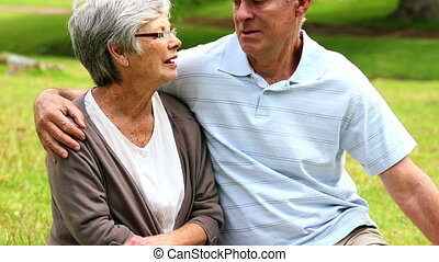 Affectionate senior couple chatting in the park on a sunny...