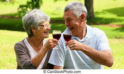 Affectionate senior couple drinking red wine in the park on...
