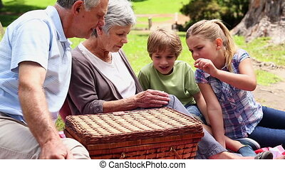 Grandparents having a picnic with their grandchildren on a...