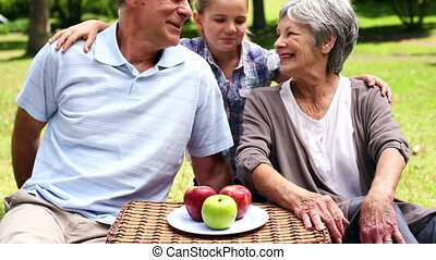 Happy senior couple relaxing in the park with their...