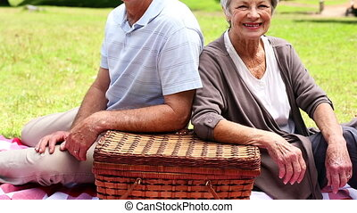 Happy senior couple relaxing in the park having a picnic on...