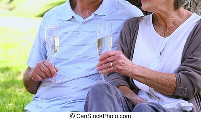Senior couple relaxing in the park - 1080p, hd, high...