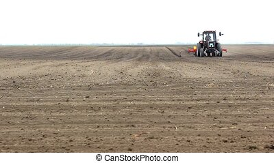sowing of sugar beet, the tractor in the field