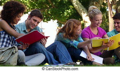 Students sitting on grass and chatting together on college...