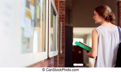 Pretty student checking the noticeboard at the university