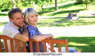 Affectionate couple sitting on park bench - Affectionate...