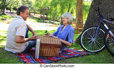 Happy couple having a picnic in the park on a sunny day