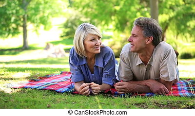 Happy couple lying on a blanket in the park on a sunny day