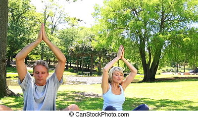 Couple doing yoga together in the park on a sunny day