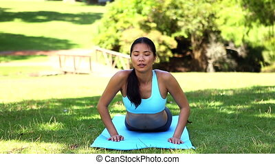 Fit asian girl doing yoga in the pa - Fit asian girl doing...