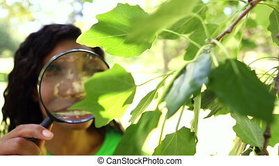 Happy environmental activist looking at leaves through...