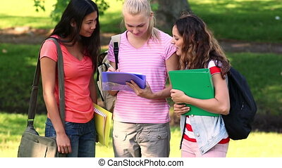 Students chatting together outdoors - Students chatting...