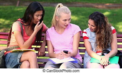 Students chatting together outside - Students chatting...