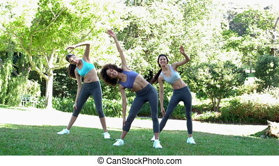 Fit friends stretching before their run in slow motion