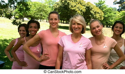 Group of women wearing pink for breast cancer in the park in...