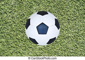 Soccer ball on grass field.