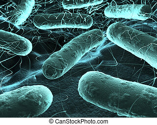 Bacteria seen under a scanning microscope - Veri high...