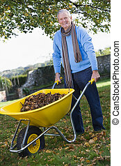 Senior man collecting leaves in wheelbarrow - Senior man...