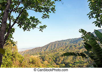 Lush Green Hills - View of the foothills of the Sierra...