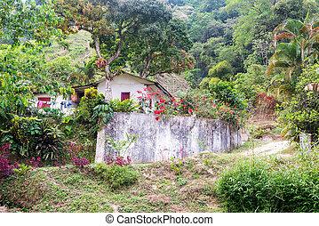 Small House on a Farm