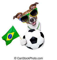 brazil fifa world cup dog - fifa world cup german dog waving...