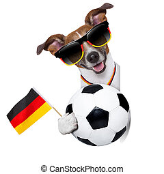 brazil fifa world cup dog - fifa world cup brazil dog with...