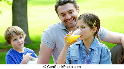 Father and children relaxing in the park together on a sunny...