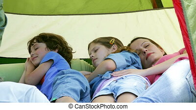 Peaceful family having a nap in their tent on a camping trip...
