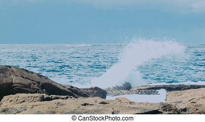Waves on a Rock - Bronte, Sydney, Australia
