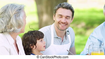 Family talking together at picnic table in the park on a...