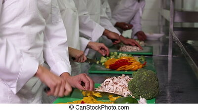 Team of chefs chopping vegetables in a commercial kitchen