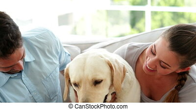Happy couple petting their labrador dog on the couch at home...