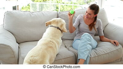 Laughing woman playing with her labrador dog on the couch at...