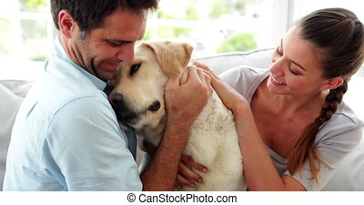 Laughing couple petting their labrador dog on the couch at...