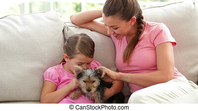 Cute little girl with mother playing with yorkshire terrier...