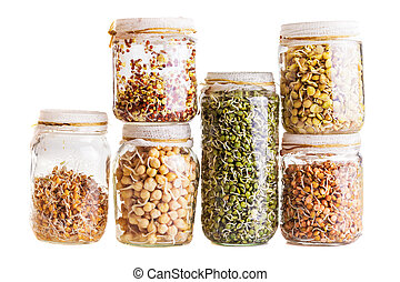 Stack of Different Sprouting Seeds Growing in a Glass Jar...