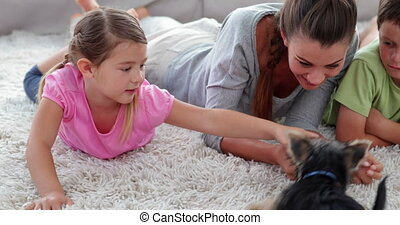 Cute siblings playing with puppy with their mother on the...