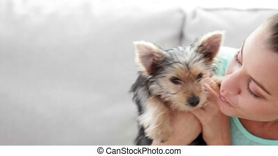Woman cuddling her cute yorkshire terrier puppy on sofa at...