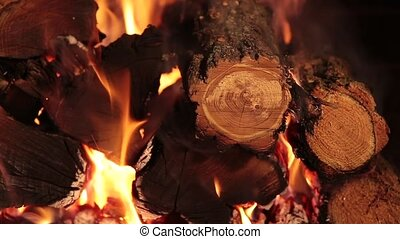Burning firewood on closeup - firewood burns with a bright...