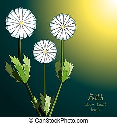 Floral fantasy background.  Camomiles.