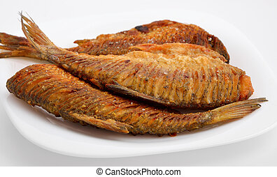Fried river fish with the cutting back. On white plate.