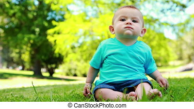 Little baby boy sitting on the gras